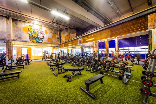 Muskelaufbau in der Fitness Fabrik
